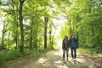 Wanderwege-Paten rund um Langenlonsheim-Stromberg gesucht - WochenSpiegel