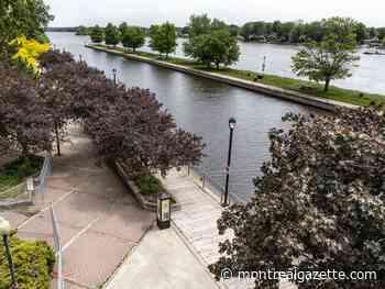 Ste-Anne-de-Bellevue set to open popular boardwalk - Montreal Gazette