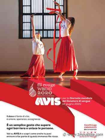 Monteprandone, si celebra la Giornata Mondiale del donatore di sangue ⋆ TM notizie - ultime notizie di OGGI, cronaca, sport - TM notizie