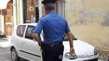 Guastalla, evade dai domiciliari e guida auto senza patente - il Resto del Carlino