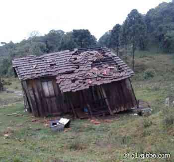 Vendaval destelha casas e arranca árvores, em Bituruna; FOTOS - G1