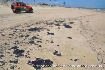 Vestígios de óleo em Amontada e Itapipoca são diferentes das manchas que afetaram o litoral em 2019 - Região - Diário do Nordeste