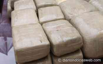 Chiapas: Arrestan a un hombre con 647 kilos de cocaína en Huixtla - Diario Noticias Web
