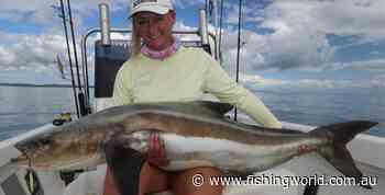 Hervey Bay Fly and Sportfishing report - Fishing World