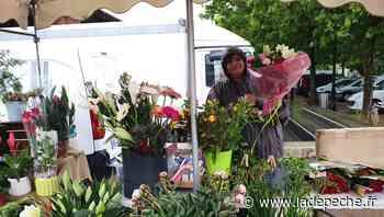 Castanet-Tolosan. Le marché au complet arrosé a l'eau de pluie - LaDepeche.fr