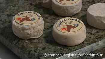 Rhône. La Rigotte de Condrieu, 10 ans d'AOC et un goût inimité - France 3 Régions