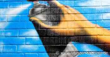 Oberursel: Zwei Graffitisprayer ertappt - Usinger Anzeiger