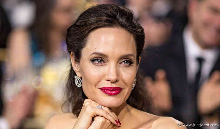Angelina Jolie's Movie 'The One & Only Ivan' to Premiere on Disney+ Instead of In Theaters