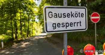 Sanierung der Gauseköte beginnt | Lokale Nachrichten aus Schlangen - Lippische Landes-Zeitung
