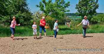 In Wehrheim wird der Schulacker wiederbelebt - Usinger Anzeiger