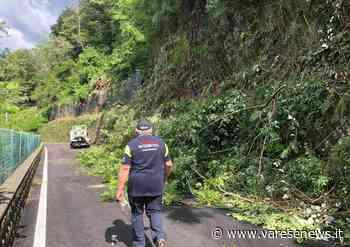 Rimossi alberi e detriti, riapre la strada che collega Laveno a Castelveccana - Varesenews