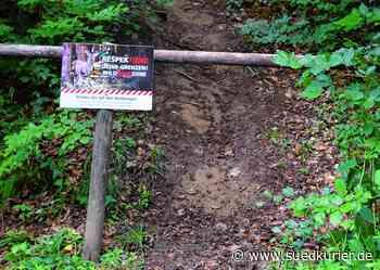 Bodman-Ludwigshafen: Alternativen statt nur Aussperren: Was Bürgermeister Matthias Weckbach zu den wilden Mountainbike-Trails sagt - SÜDKURIER Online