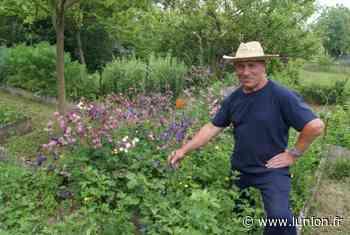 Epernay. Le jardin Salix Malva rouvre ce dimanche 14 juin - L'Union