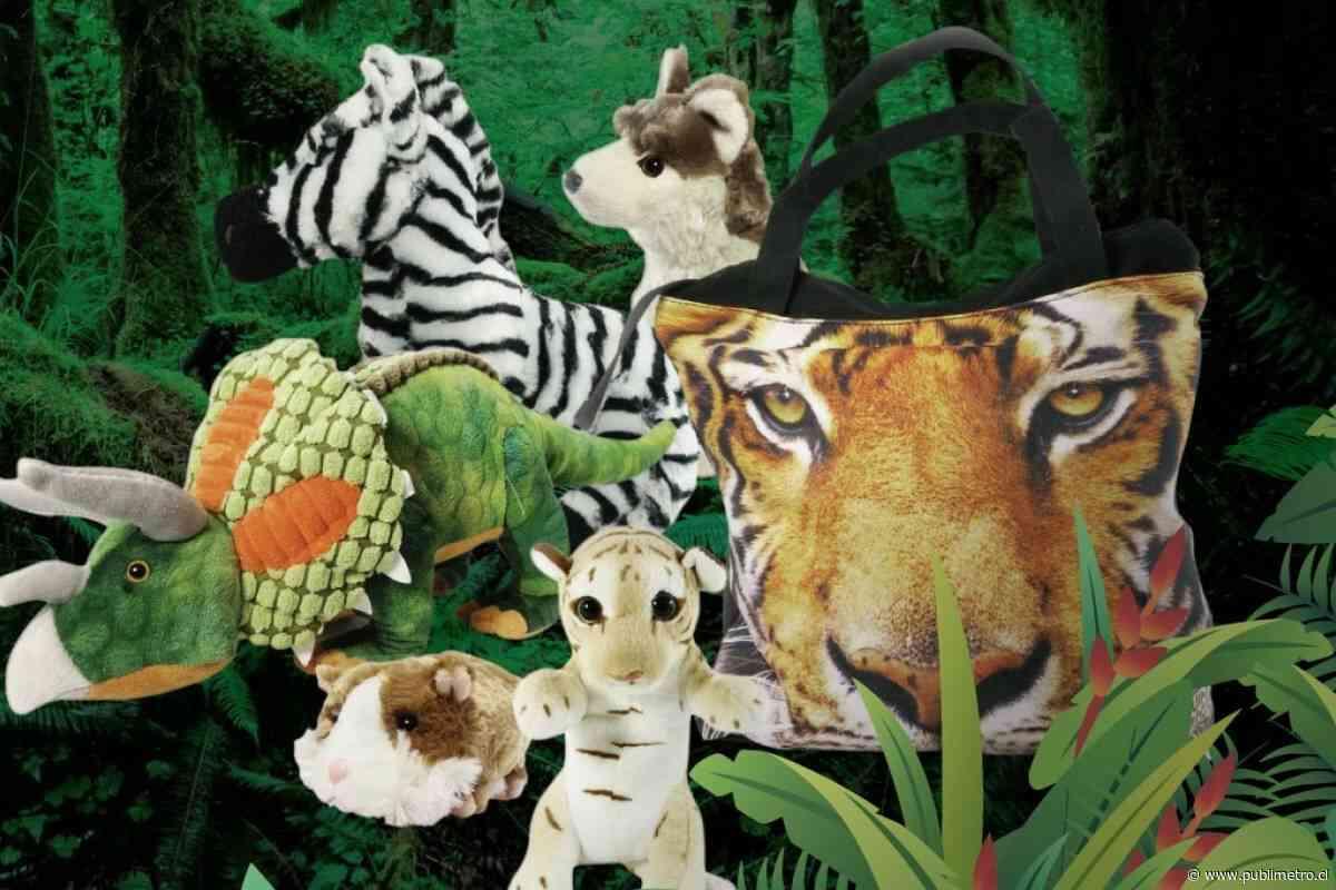 Con peluches, juguetes y ropa salvaje: Buin Zoo abrió su tienda online para poder alimentar a sus 2.500 animales durante la pandemia - Publimetro Chile