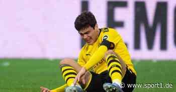 Borussia Dortmund: Otto Addo bremst Euphorie bei Giovanni Reyna - SPORT1