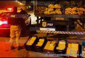Polícia Rodoviária apreende 175 quilos de pasta base de cocaína em Guapimirim - Plantão dos Lagos