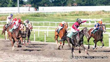 Horse racing: Post time at San Lazaro Leisure Park looms in July - Manila Bulletin