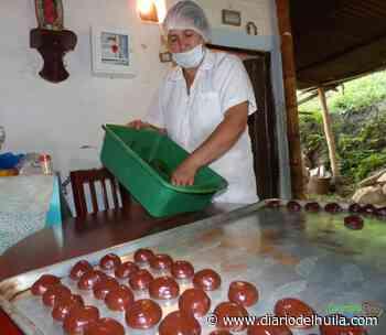 Oporapa le apuesta al procesamiento del chocolate - Diario del Huila