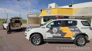 Polícia Rodoviária apreende carro lotado de maconha em Rancharia e homem é preso em flagrante - Assiscity - Notícias de Assis SP e região hoje