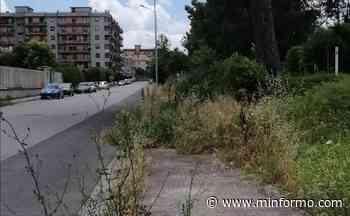 Degrado ad Arzano: ormai la città è allo sbando - Minformo