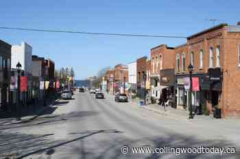 Fewer flowers planned for downtown Thornbury this summer - CollingwoodToday