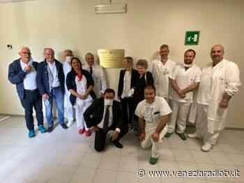 Portogruaro centro di riferimento per chirurgia conservativa dell'anca - Televenezia