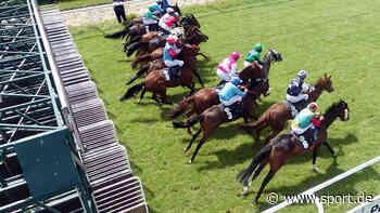 Pferdesport in Zeiten von Corona - sport.de