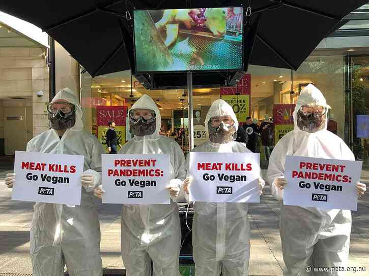 Protesters in Hazmat Suits Blame Meat Industry for COVID-19