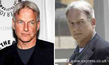 NCIS cast: Why did the show's creator not want Mark Harmon to play Gibbs? - Express