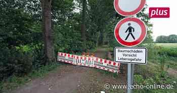 Pappelallee am Bickenbacher Erlensee bleibt gesperrt - Echo Online