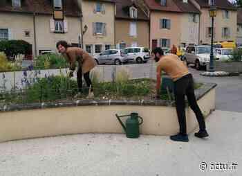 Jura. À Lons-le-Saunier, des dons pour faire vivre les jardins partagés de la place de la Comédie - actu.fr