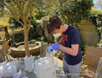 Witley schoolboy's a bit handy at making sanitiser - Farnham Herald