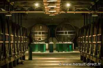 Hérault - Marseillan - La Maison Noilly Prat ouvre à nouveau ses portes samedi 13 juin - Hérault-Direct