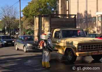 Ruas de Santana do Livramento têm aumento na circulação de turistas em meio à pandemia - G1