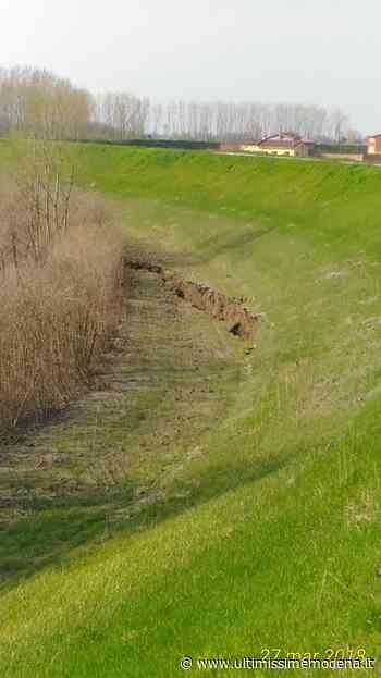 Concordia: distacco di una frana di 50 metri sulla golena del Secchia - Ultimissime Modena