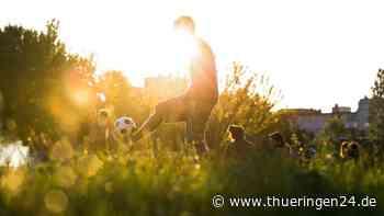 Weimar: 17-Jähriger will Fußball spielen – doch jetzt muss er tief in die Tasche greifen - Thüringen24