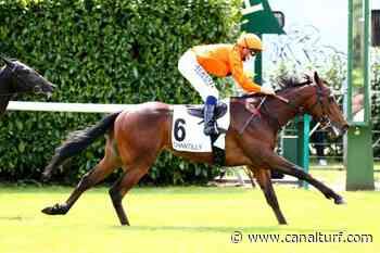 Pronostic de la course PRIX LA FLECHE - 14 juin 2020 - Canal Turf