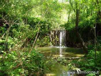 CASTELPLANIO / Sentiero del Granchio Nero, dove la natura è incontaminata - QDM Notizie