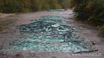 """(Galeria) Autor de """"atentado ambiental"""" no Monte do Pilar obrigado a limpar - Imediato"""