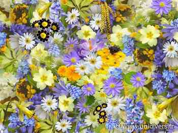 Sortie botanique : Le pouvoir des plantes Atelier JenniFleurs dimanche 21 juin 2020 - Unidivers