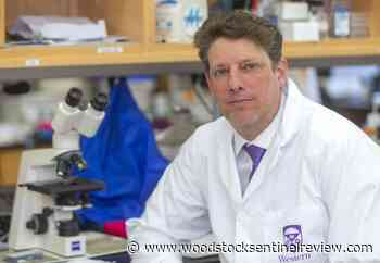 COVID-19: How Southwestern Ontario research has gone viral - Woodstock Sentinel Review