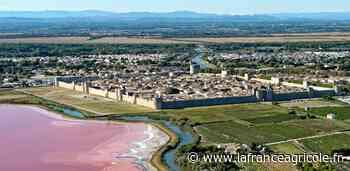 Beau panorama : Sur les remparts d'Aigues-Mortes - La France Agricole