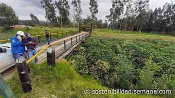 Fuertes lluvias represaron el río Ubaté en Fúquene, Cundinamarca - Semana