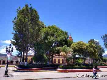 Realiza Tlaxco poda de árboles para evitar riesgos a transeúntes - e-Tlaxcala Periódico Digital de Tlaxcala