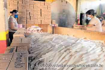 Comércio de velas dobra durante a pandemia em Juazeiro do Norte - Diário do Nordeste