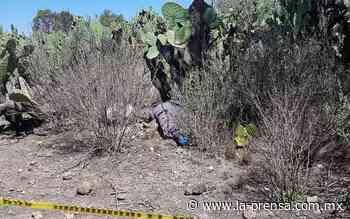 Envuelto en cobijas localizan cadáver en Zumpango - La Prensa