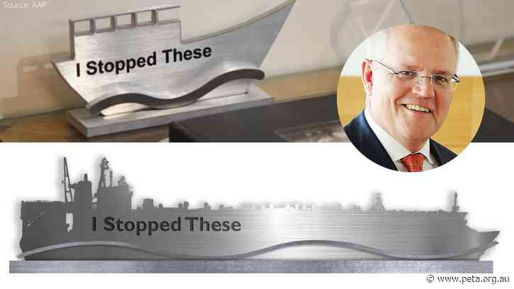 """PETA Offers ScoMo New """"I Stopped These"""" Boat Trophy"""