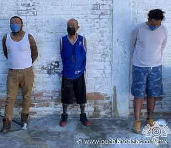 Captura Policía Estatal a tres presuntos narcomenudistas en Ajalpan - Puebla Noticias