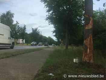Man zonder rijbewijs komt om het leven na crash, passagier in kritieke toestand