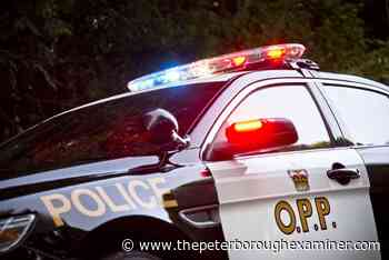 Peterborough County OPP track down suspect in Clarington after driver flees - ThePeterboroughExaminer.com